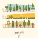 Colección del vector de las plantas Fotografía de archivo