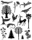 Colección del vector de mandalas del color Imagen de archivo libre de regalías