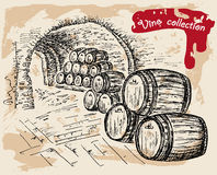 Colección del vino Foto de archivo