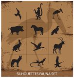 Colección determinada de la silueta de los símbolos de la fauna del safari Fotos de archivo