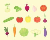 Colección determinada vegetal con diversa clase y diversos colores con el estilo plano moderno - vector stock de ilustración