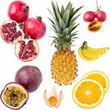 Colección exótica de las frutas Foto de archivo libre de regalías