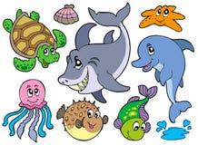 Colección feliz de los animales de mar Foto de archivo libre de regalías
