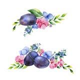 Colección floral colorida con las flores multicoloras, hojas, ramas, bayas Foto de archivo libre de regalías