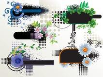 Colección floral de los marcos Foto de archivo libre de regalías