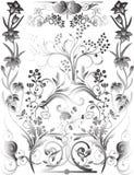 Colección floral grande Imagen de archivo libre de regalías