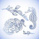 Colección gráfica del Seahorse del vector Imagenes de archivo