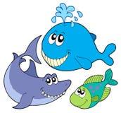 Colección grande de los pescados