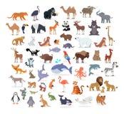 Colección integral animal de los retratos en blanco stock de ilustración