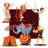 Colección linda de los animales de circo foto de archivo libre de regalías