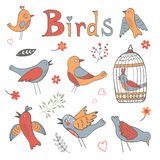 Colección linda de pájaros divertidos Foto de archivo libre de regalías