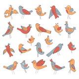 Colección linda de pájaros divertidos Fotografía de archivo