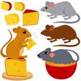 Colección linda del vector de ratón de la rata Imagen de archivo