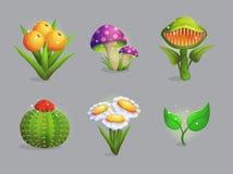 Colección mágica de las plantas y de las flores de la fantasía Fotografía de archivo