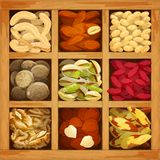 Colección Nuts clasificada Fotografía de archivo