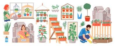 Colección que cultiva un huerto urbana Gente que vive en plantas de cultivación de la ciudad, cosechas crecientes o verduras en p stock de ilustración