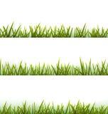 Colección realista de la hierba verde aislada en blanco Fotos de archivo libres de regalías