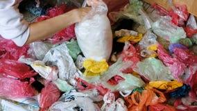 Colección separada de las bolsas de plástico coloreadas, clasificando para reciclar la mano femenina almacen de video