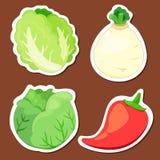 Colección vegetal linda 02 Fotografía de archivo libre de regalías