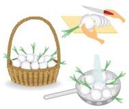 colecci?n La cosecha de la cebolla se almacena en la cesta Las verduras se lavan bajo el agua en un colador, cortaron con un cuch stock de ilustración