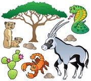 Colección 1 de los animales de la sabana Imagenes de archivo