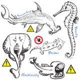 Colección 2 de los animales del agua Fotografía de archivo libre de regalías