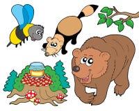 Colección 2 de los animales del bosque Fotos de archivo