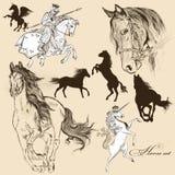 Colección de caballos detallados del vector para el diseño Imágenes de archivo libres de regalías
