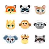 Colección de caras animales lindas incluyendo zorro, panda, gato, potro, mono, jirafa, koala, ovejas y mapache Imágenes de archivo libres de regalías