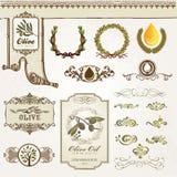 Colección de elementos verdes olivas Fotografía de archivo libre de regalías