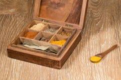 Colección de especias indias en caja de madera Imagen de archivo libre de regalías