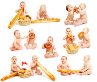 Colección de los bebés del pan Imagen de archivo