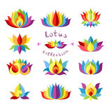 Colección de los lotos del arco iris Foto de archivo libre de regalías