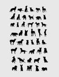 Colección de Silgouettes del perro Foto de archivo libre de regalías