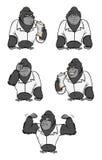 Colección del juego del laboratorio del gorila Foto de archivo