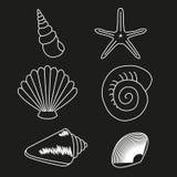 Colección del mar Ejemplo dibujado mano original 2 Imágenes de archivo libres de regalías