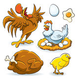Colección del pollo Imagen de archivo