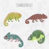 Colección determinada del camaleón de la historieta Etiquetas engomadas, carteles, fondo Ilustración del vector Fotos de archivo