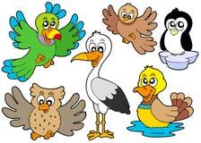 Colección linda 2 de los pájaros Fotografía de archivo libre de regalías