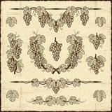 Colección retra de las uvas Fotografía de archivo libre de regalías