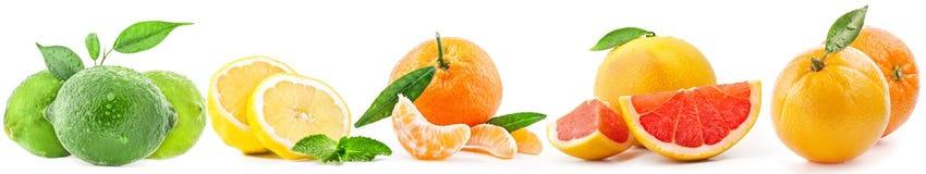 Colecciones de la fruta aisladas en blanco fotografía de archivo libre de regalías
