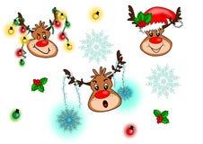Colecciones del reno de la Navidad Imagen de archivo