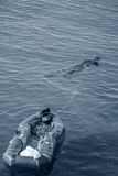 Colector de Rapan con el barco El Mar Negro Imagen de archivo libre de regalías