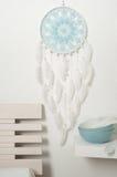 Colector ideal azul con las plumas blancas Imagen de archivo libre de regalías