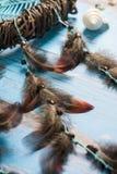 Colector ideal con las plumas Fotos de archivo