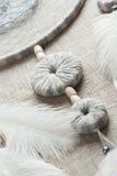 Colector ideal con las plumas blancas Foto de archivo libre de regalías