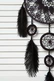 Colector ideal negro Fotografía de archivo libre de regalías