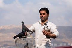 Colector iraquí de la paloma que sostiene una paloma con cuidado Imagen de archivo