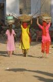 Colectores del estiércol del camello en el trabajo Foto de archivo libre de regalías