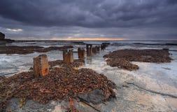 Coledale Rockshelfat dawn Royalty Free Stock Images